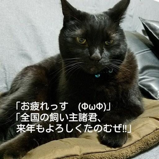 Fotor_151463110309758.jpg