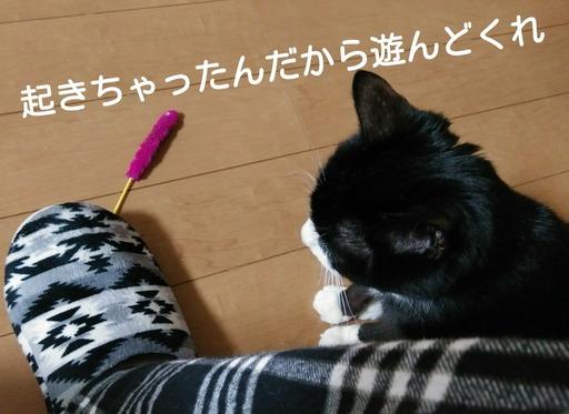 Fotor_151546069850291.jpg