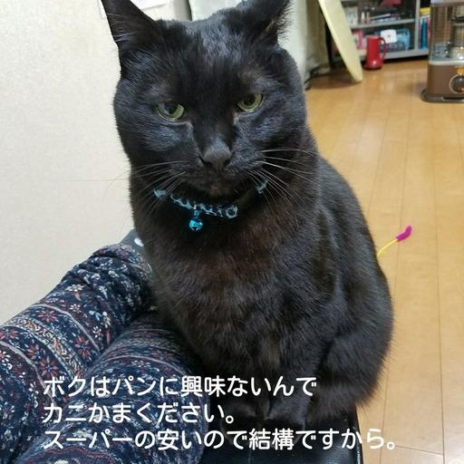 Fotor_151546033662575.jpg