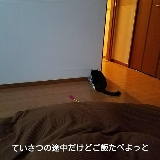 Fotor_151920617814795.jpg