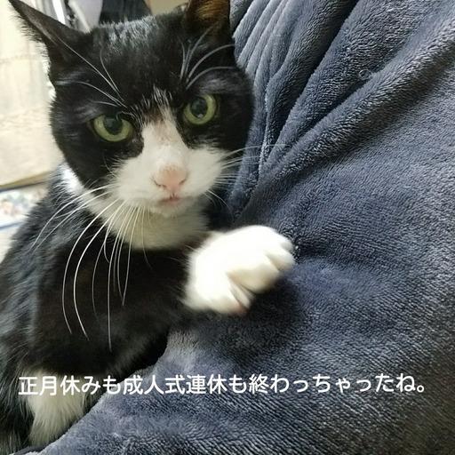 Fotor_151546002736147.jpg